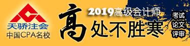 2019天骄注会高级会计实务名师报名